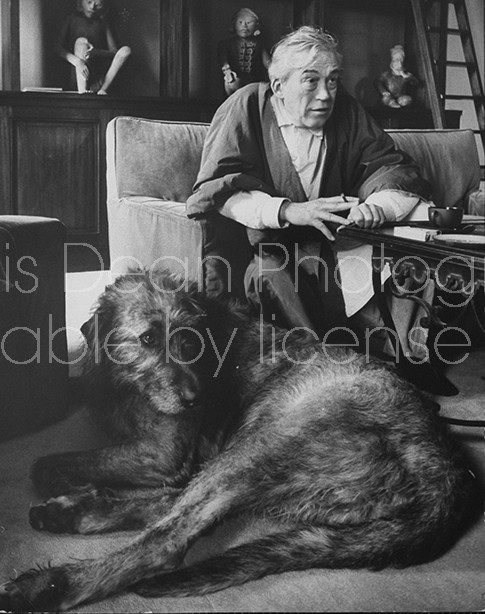 Actor/Director John Huston sitting at home with his Irish wolfhound resting at his feet.