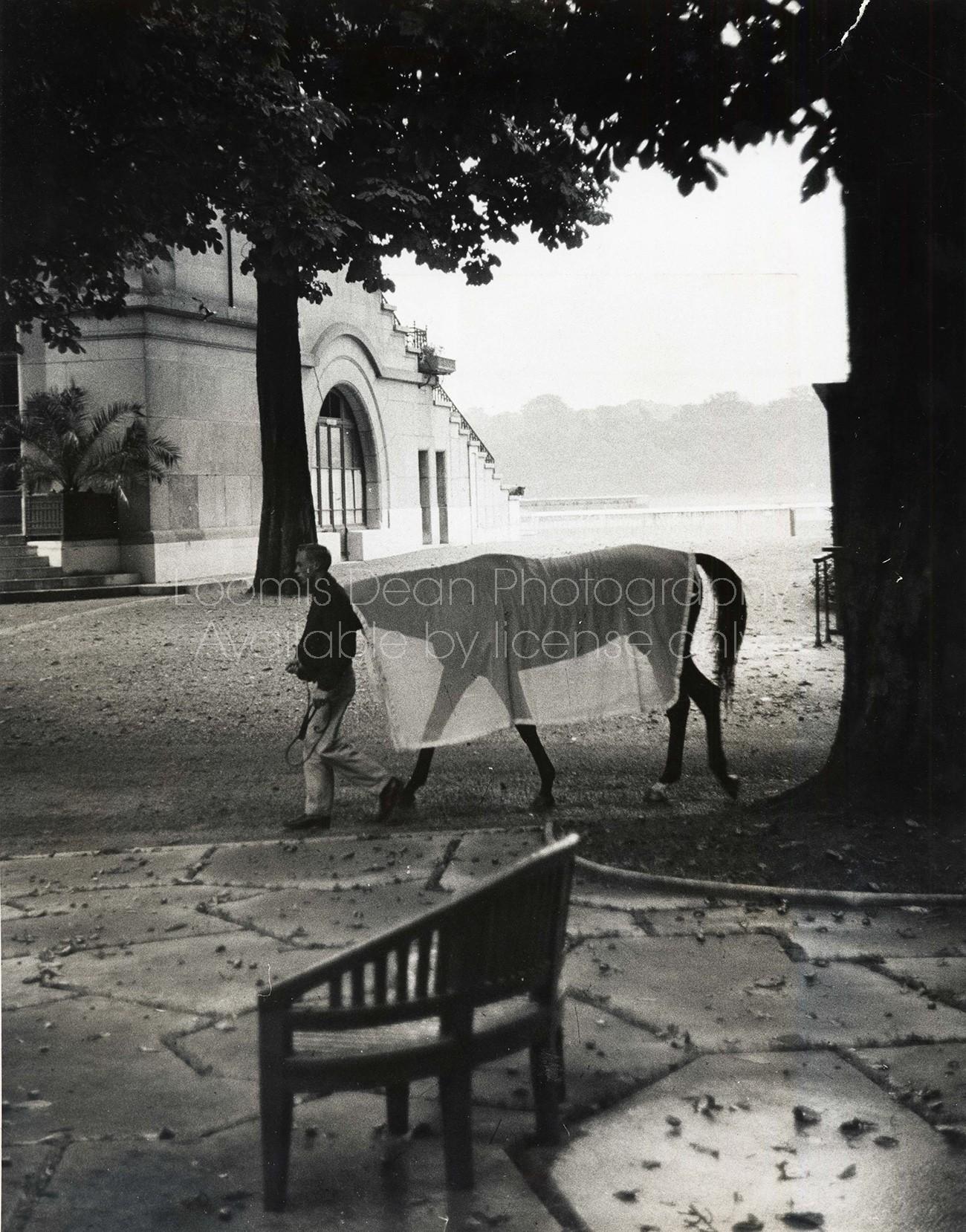 JOCKEY EDDIE ARCARO IN PARIS S 472