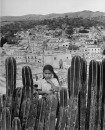 A little girl standing behind a row of cactuses.