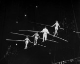 Circus Aerialists and tight rope walkers at Madison Sq. Garden.