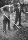 "Shepherd Mead (L), satiric American author of book ""How to Live Like a Lord Without Really Trying"", gardening with advice from a neighbor."