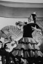 Spanish Flamenco dancer.