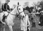 "Actor Gregory Peck's horse, ""Owen's Sedge"", during running of Grand National race, with Gregory Peck and his wife in the background (R, rear)."