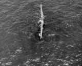 CRASHED U.S. AIR FORCE B29 OFF SAIPAN 097