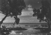 LOOMIS DEANs EARLY FLORIDA
