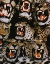 TAXIDERMIED LEOPARDS  IN NAIROBI Color 468