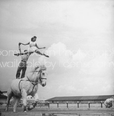 Circus equestrian Ernstine Clarke performing his act during the show.