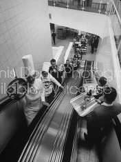 Restaurant staff incl. chefs & waiters carrying trays of food as they ride up & down on the escalator from the 2-story kitchen of the Rotterdam Hilton Hotel.