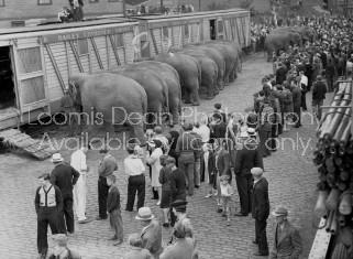 RINGLING CIRCUS ELEPHANTS LOADING