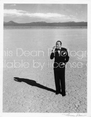 NOEL COWARD IN THE DESERT